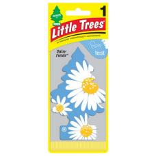 Little Trees Daisy Fields