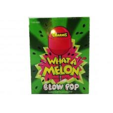 Charms What A Melon Blow Pop Bubble Gum Filled Lollipop